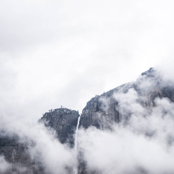 fog Namphuong Van